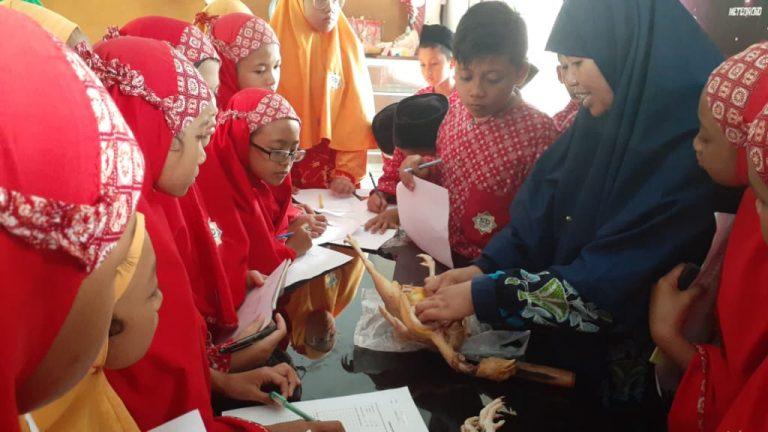 Integrated Learning, Inovasi Pembelajaran SD Alam Islami eLKISI